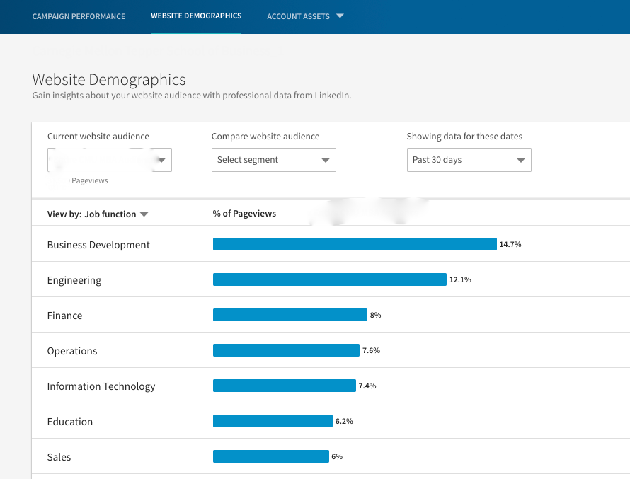 LinkedIn Remarketing Demographics